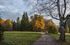 Landskapet parkerar i Pavlovsk Den kalla gryningen arkivbilder