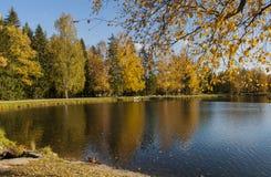 Landskapet parkerar i Pavlovsk Den kalla gryningen arkivbild