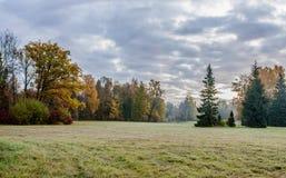 Landskapet parkerar i Pavlovsk Den kalla gryningen fotografering för bildbyråer