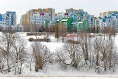 Landskapet parkerar Mitino, parkerar microdistrict naturligt historiskt och Mitino i vinter moscow russia royaltyfria bilder