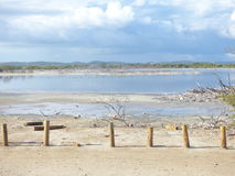 Landskapet som är naturligt parkerar, Puerto Rico Royaltyfria Foton