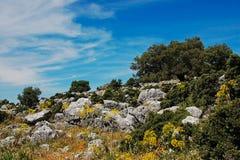 Landskapet vaggar och vildblommatoppiga bergskedjor Spanien Arkivfoton