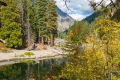 Landskapflodspolningen sörjer igenom Forest Mountain i nedgång royaltyfria foton