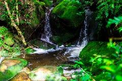 Landskapfotoet, den härliga vattenfallet och lönnen i rainforesten, vattenfall i Thailand Royaltyfria Bilder