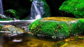 Landskapfotoet, den härliga vattenfallet och lönnen i rainforesten, vattenfall i Thailand Royaltyfri Foto
