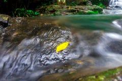 Landskapfotoet, härlig vattenfall i rainforest, vattenfall i Thailand Royaltyfria Bilder