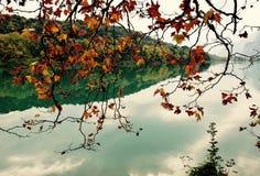 Landskaphöst Italien Royaltyfria Bilder