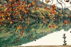 Landskaphöstsjö Arkivfoto