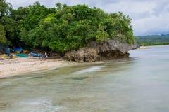 Landskaphavet vaggar stranden arkivbilder