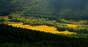 Landskaplandskap av Mudanfeng (2) Arkivbilder