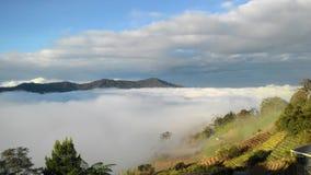 Landskaplandskapsikt av berget Kinabalu Arkivbilder
