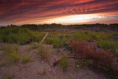 Landskaplandssolnedgång Arkivfoto