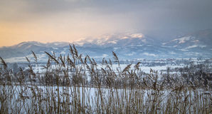Landskapnatur från Transylvania Arkivfoton