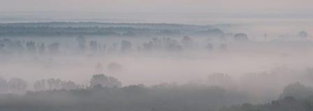 Landskappanorama med dimma royaltyfri foto