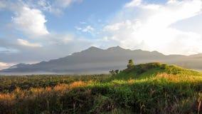 Landskappanoramasikt av fältet på berget Arkivfoton