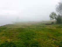 Landskappanoramasikt av fältet på berget i dimma Arkivfoton