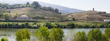 LandskapPeso da Regua Portugal Arkivbild