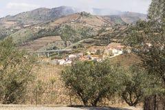 LandskapPeso da Regua Portugal Royaltyfria Foton