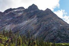 Landskapsikt av alpina träd och ett enormt stenigt berg arkivbilder