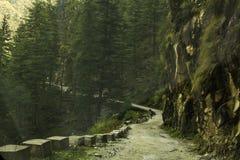 Landskapsikt av den smala bergvägen och mannen royaltyfri fotografi