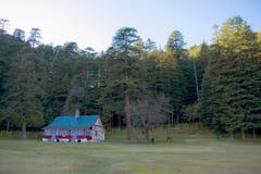 Landskapsikt av stenhuset och kor med träd i bakgrund royaltyfria foton