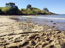 Landskapsikt av tunnbindarestranden Nya Zeeland Fotografering för Bildbyråer