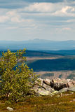 Landskapsikt från berget Arkivfoto