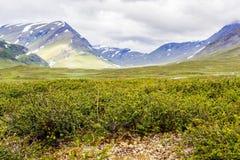 Landskapsikt i den svenska norden Royaltyfri Foto