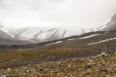 Landskapsikt i den svenska norden Arkivfoto