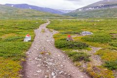 Landskapsikt i den svenska norden Fotografering för Bildbyråer