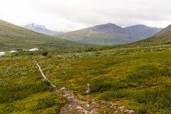 Landskapsikt i den svenska norden Arkivfoton