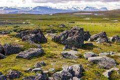 Landskapsikt i den svenska norden Arkivbild