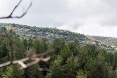 Landskapsikt i norr Libanon arkivfoton