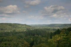 Landskapsikt på skogblast och blå himmel med moln i bakgrund Arkivfoton