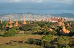 Landskapsikten av Bagan plattar till landet av tusen pagod av Myanmar Royaltyfria Bilder