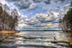 Landskapskoghimmel och vatten Royaltyfri Fotografi