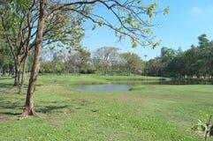 Landskapskott i parkera royaltyfria foton