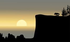 Landskapsol på morgonen i havet Royaltyfria Foton