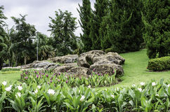 Landskapstenar och blommor royaltyfri fotografi