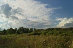 Landskapträd i fältblåttmolnen Arkivfoton