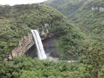 Landskapvattenfall i skog royaltyfria bilder