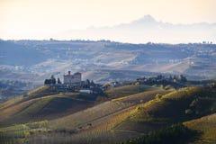 Landskapvingårdar av Langa Piedmont Italien Royaltyfri Foto
