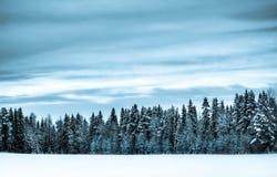 landskapvinter Royaltyfria Bilder