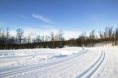landskorset skidar trailen Arkivfoton