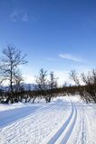 landskorset skidar trailen Royaltyfria Bilder