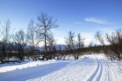 landskorset skidar trailen Fotografering för Bildbyråer