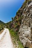 landskurvväg Royaltyfri Bild