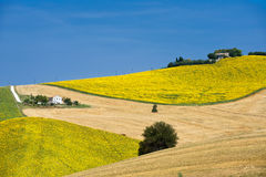 Landslandskap i gränser (Italien) Arkivfoto