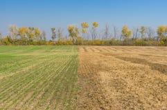 Landslandskap med två säsongsbetonade fält Arkivbilder