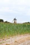 Landslandskap med väderkvarnen, Frankrike Arkivfoto
